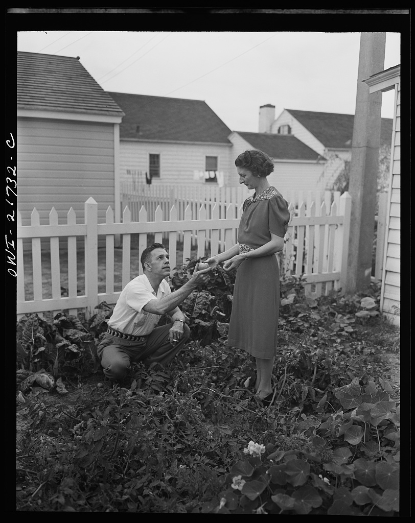 Mr. and Mrs. Babcock enjoy their garden and grow most of their own vegetables [PHOTO: Library of Congress]