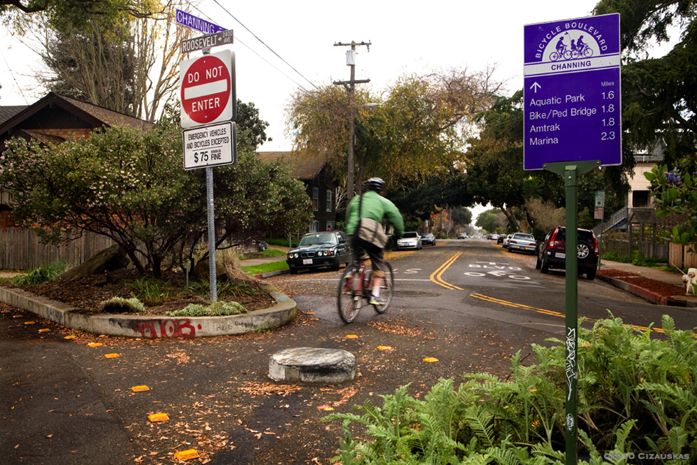 Bike Boulevard in Berkeley, CA [PHOTO: Artbandito]
