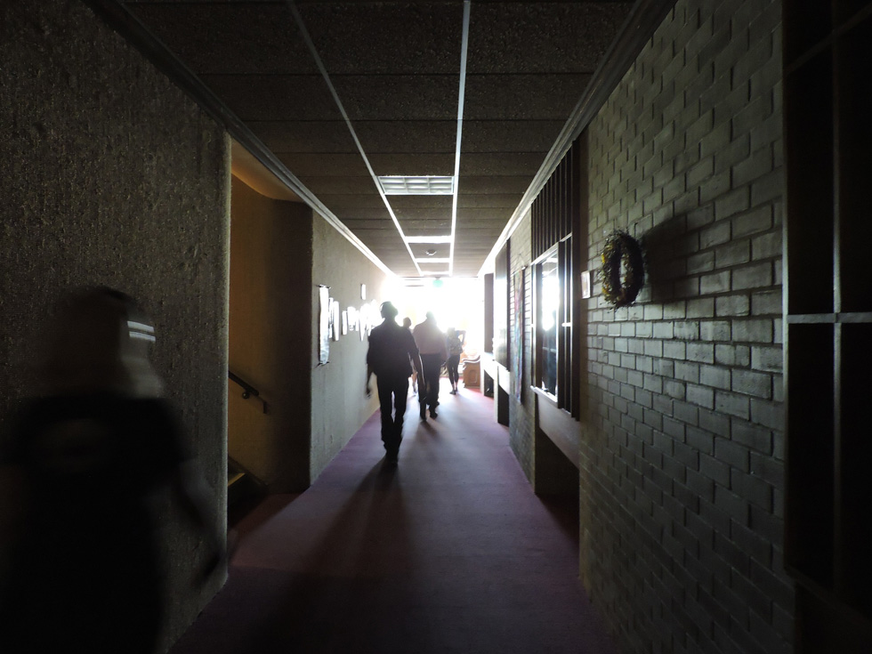 Walk into the light, the voice says. So we do. [PHOTO: Joanne Brokaw]