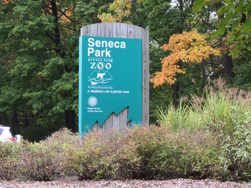We take a left, and head into Seneca Park/Seneca Park Zoo. [PHOTO: Ryan Green]