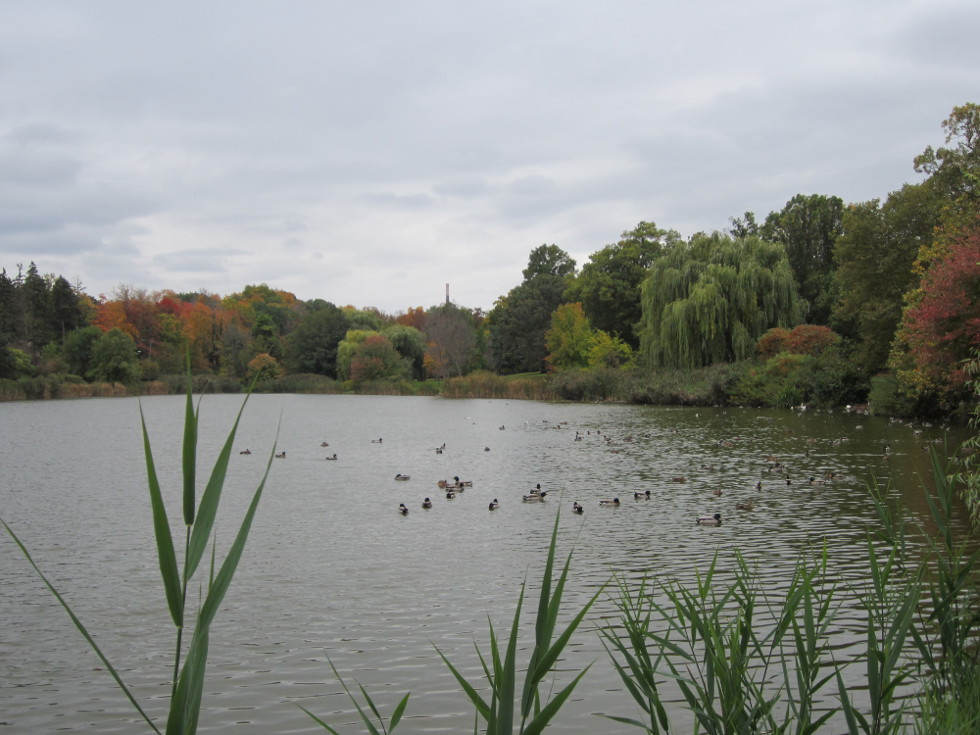 Trout Lake, Seneca Park. [PHOTO: Ryan Green]