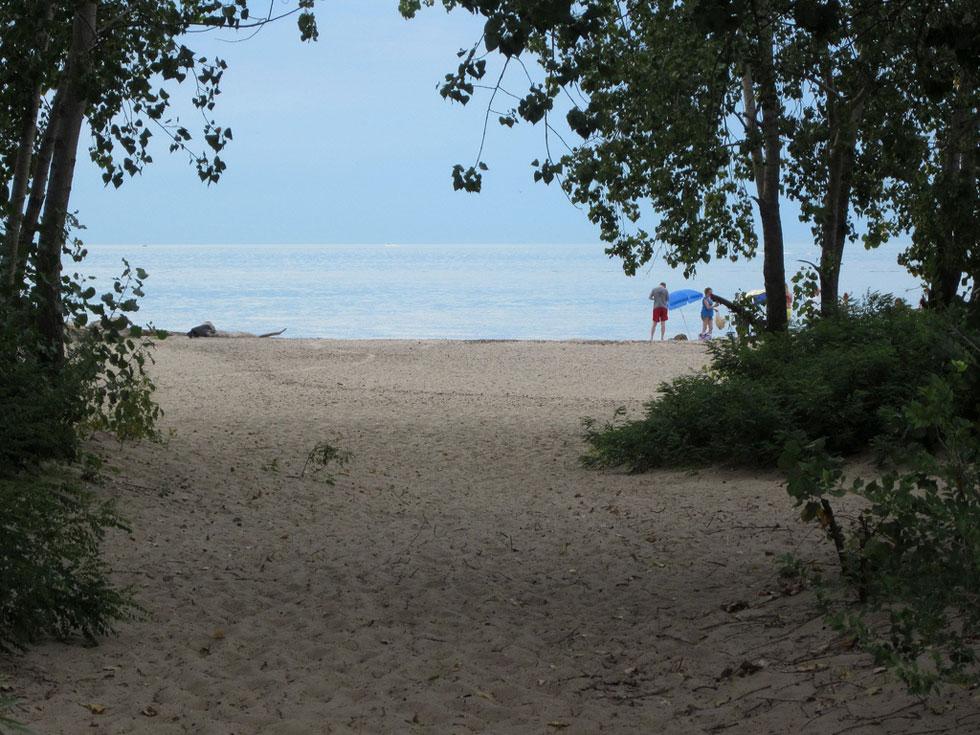 Seabreeze park beach. [PHOTO: Ryan Green]