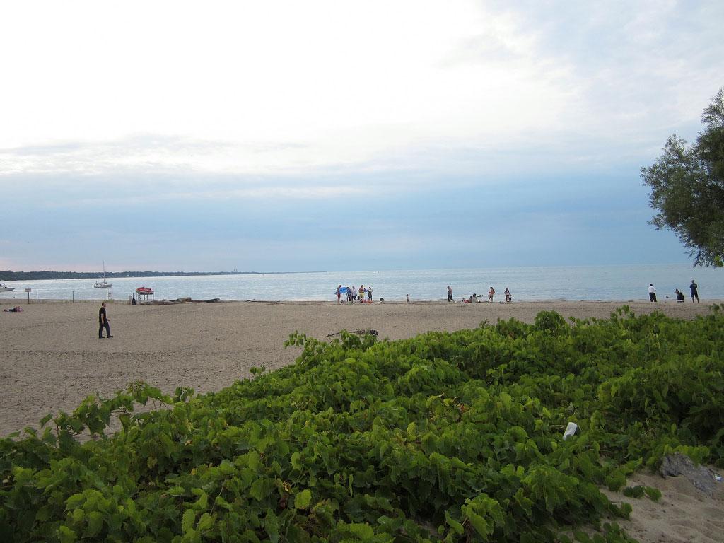 The beach at Seabreeze. [PHOTO: Ryan Green]