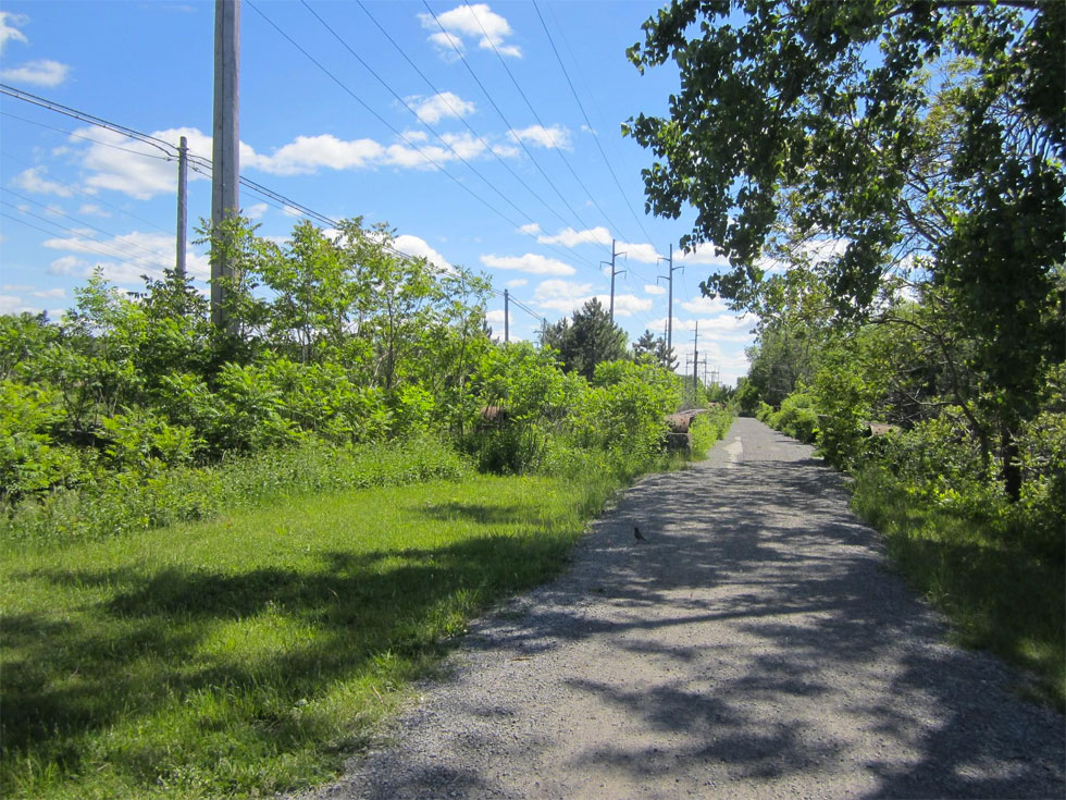 Erie Canal Path. [PHOTO: Ryan Green]