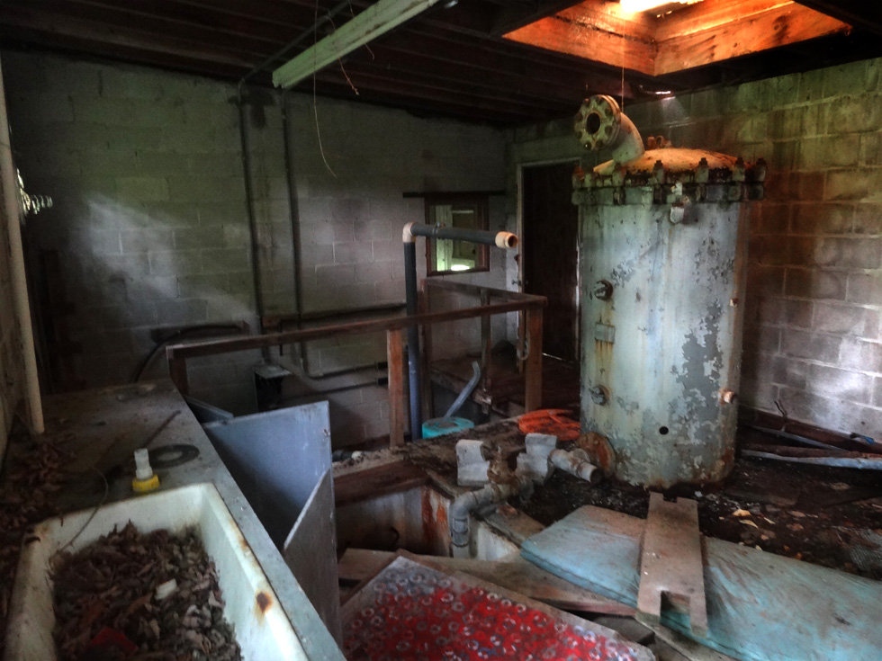 Beechwood Park in Sodus, NY is a former Girl Scouts of America summer camp. The property has been left as it was abandoned in 1996. [PHOTO: Chris Clemens and Luke Myer]