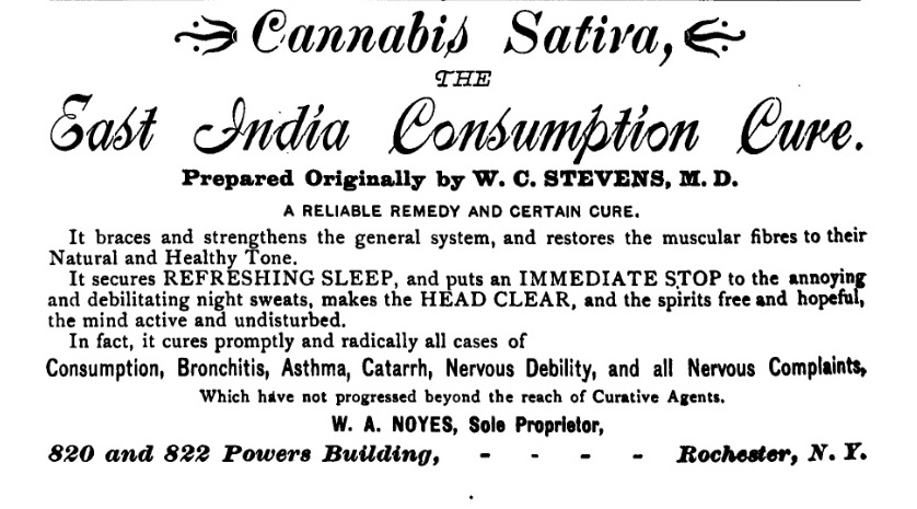 1895 ad for cannabis.