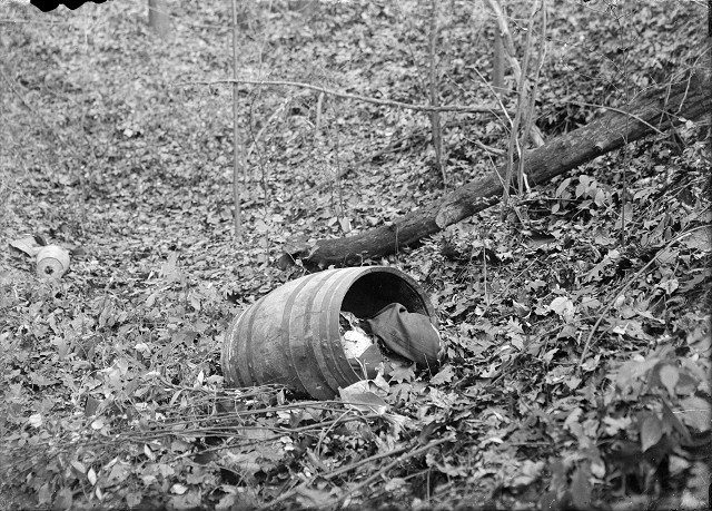 A whiskey barrel lies among the shrubs and fallen leaves in a Webster gully. This close-up photograph, showing cloth in the top of the barrel, was taken before the dismembered body of Francesco Manzello had been removed from the barrel. [PHOTO: Albert R. Stone]