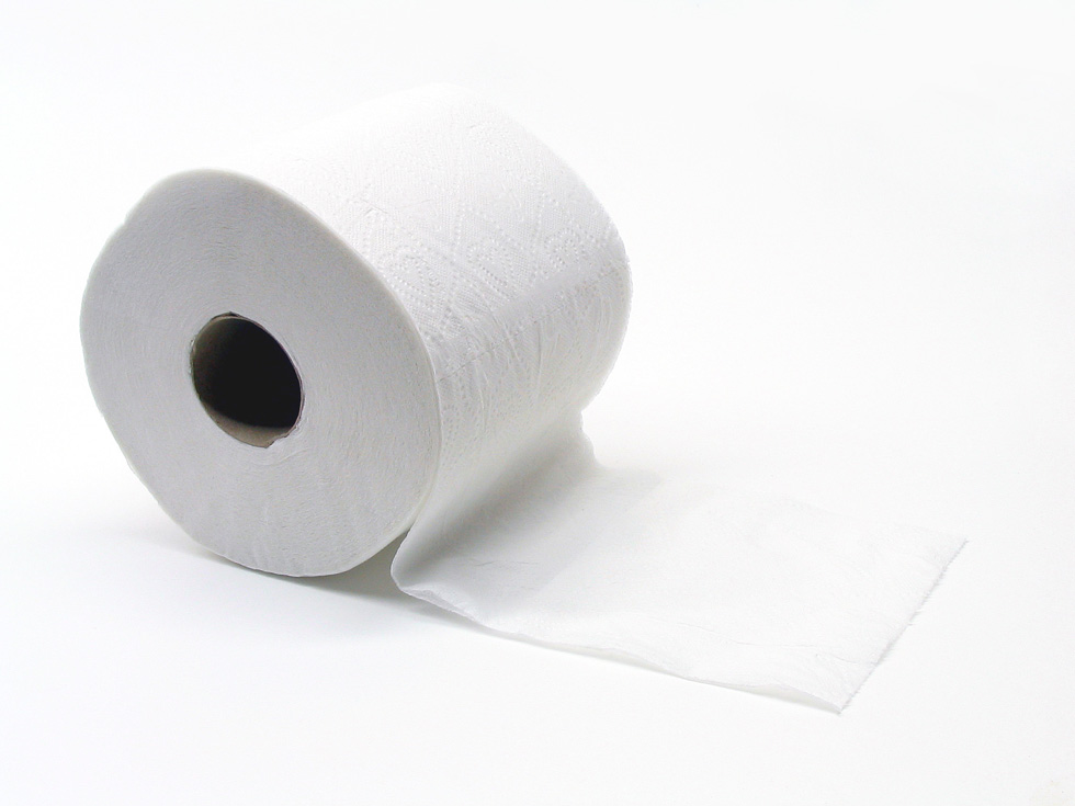 Downtown may finally get its toilet paper in 2014.