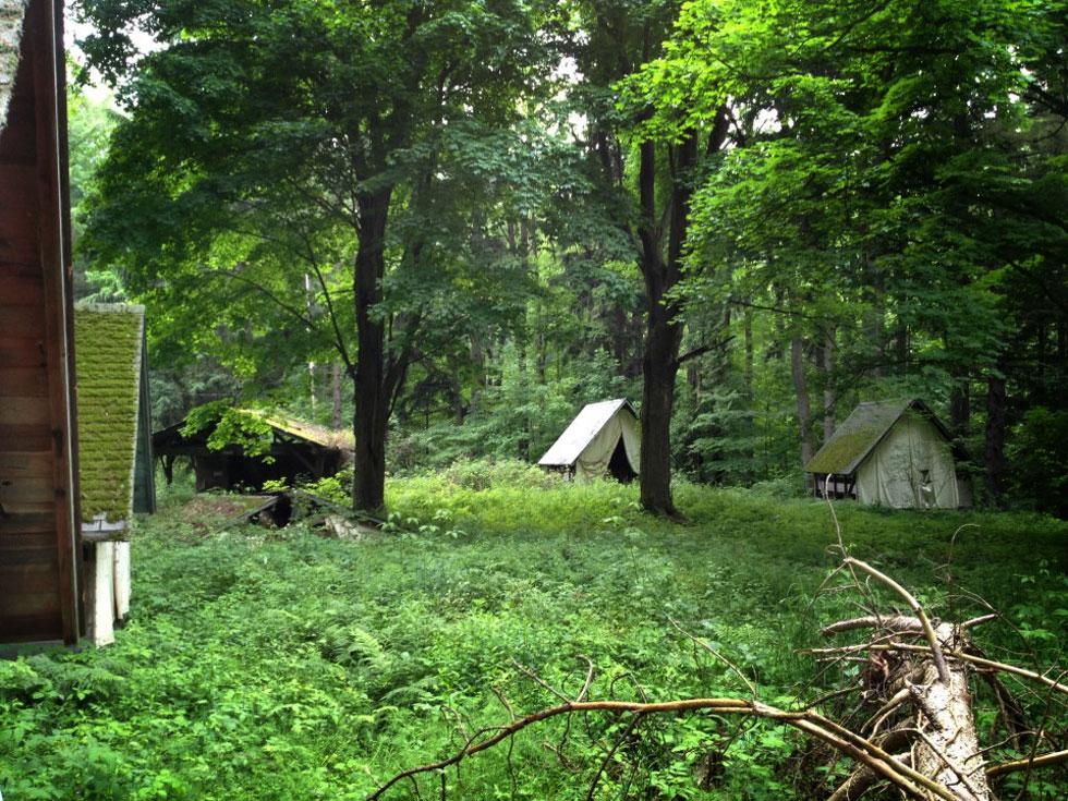 Rochestersubway Com Abandoned Girl Scout Camp Beech Wood